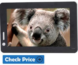 Lilliput UM70 cheapest portable monitor