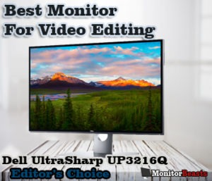 best monitor for video editors
